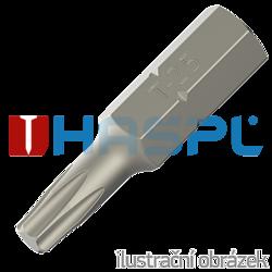 Hrot Torx TX25 - 25 mm